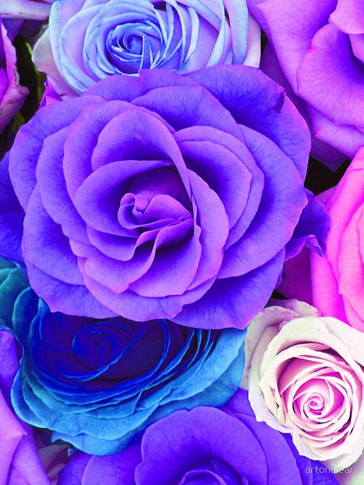 Colorful Roses Collage Cool Tones Iphone Case Cover By Artonwear Flower Phone Wallpaper Colorful Roses Flower Wallpaper Iphone colorful flower wallpaper