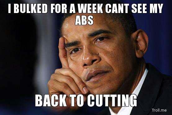 Workout Motivation Meme Funny : Can't see my abs back to cutting on bodybuilding motivation http