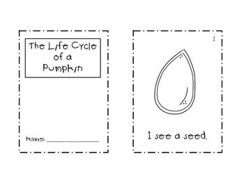 image about Life Cycle of a Pumpkin Printable called Lifestyle Cycle of a Pumpkin Mini Booklet No cost Printable