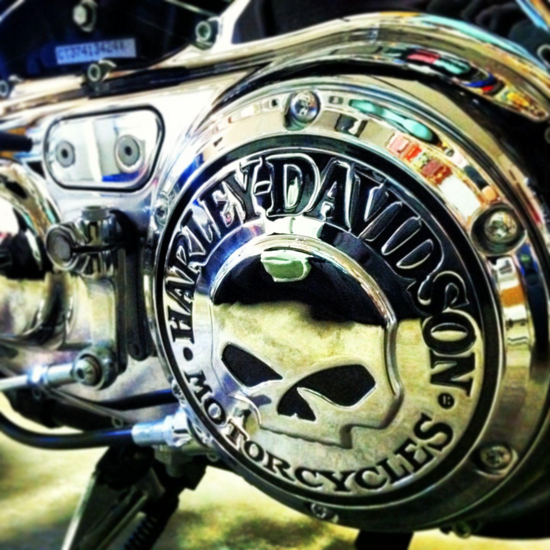 Darcy Used Cars Willie G Skull HD | Shawty Wanna Ride | Pinterest