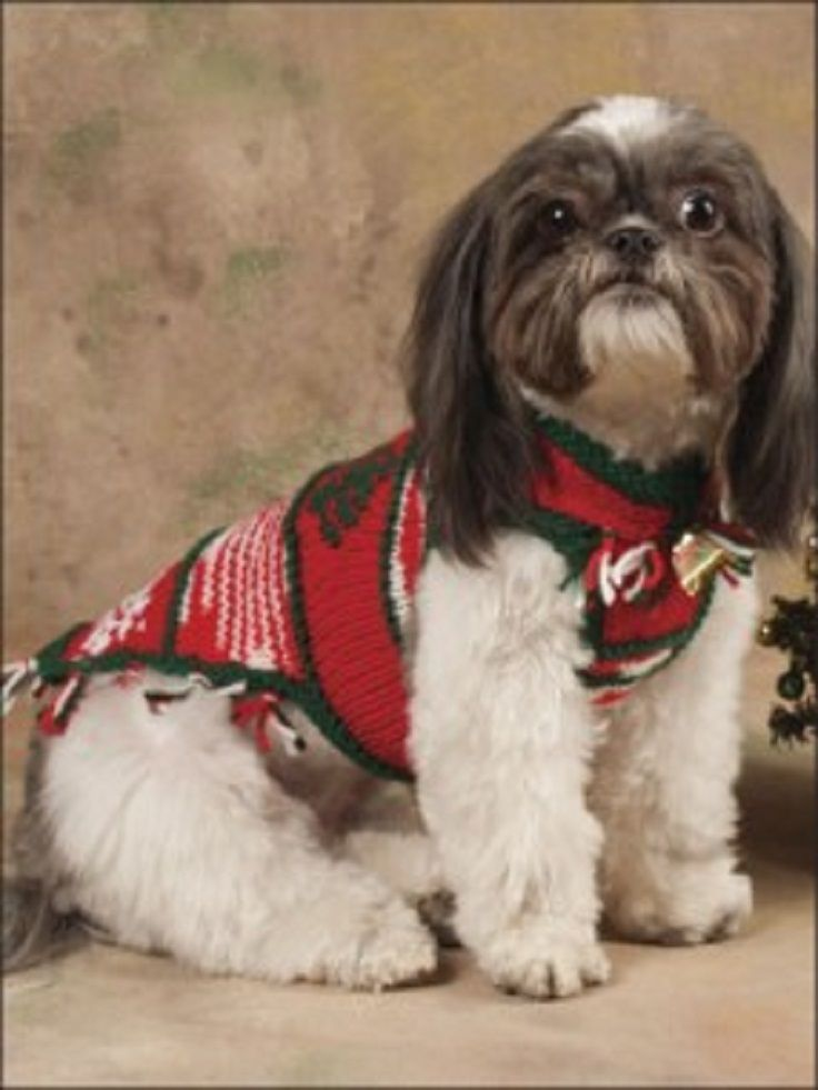 Top 10 Free Knitting Patterns For Cats and Dogs | DOGS | Pinterest ...