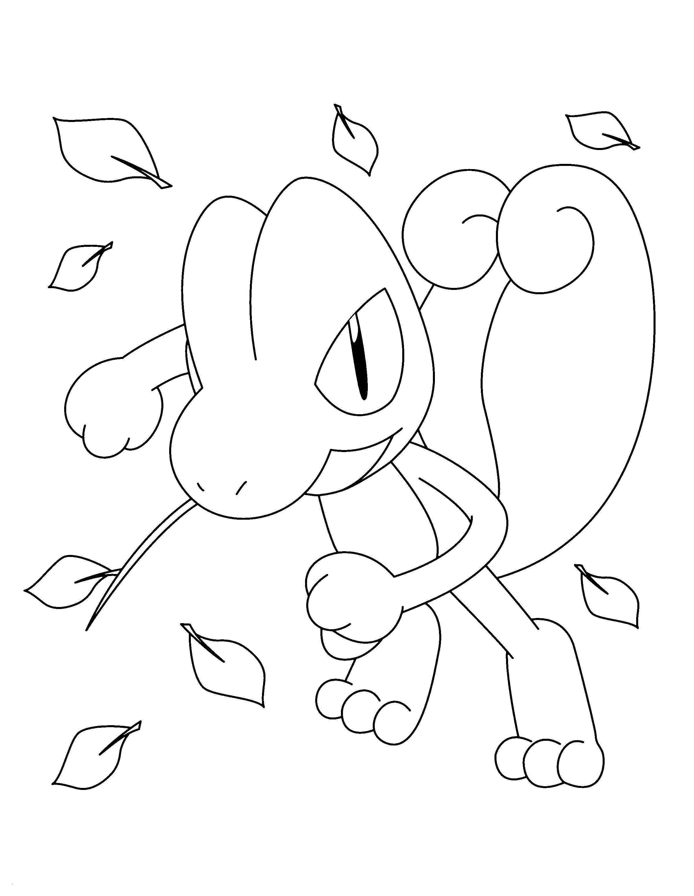 6 Pokemon Ausmalbilder Xy - Besten Bilder von ausmalbilder