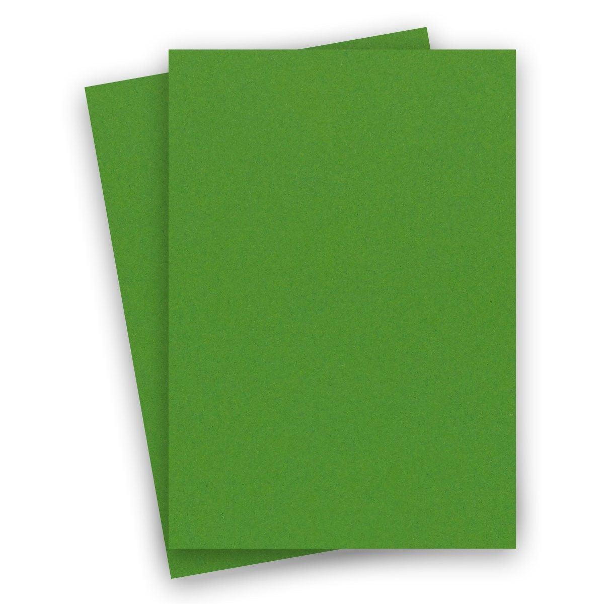 Extract Cactus 8 1 2 X 14 Legal Size Paper 130 Gsm 36 88lb Text 200 Pk Legal Size Paper Cardstock Paper Card Stock