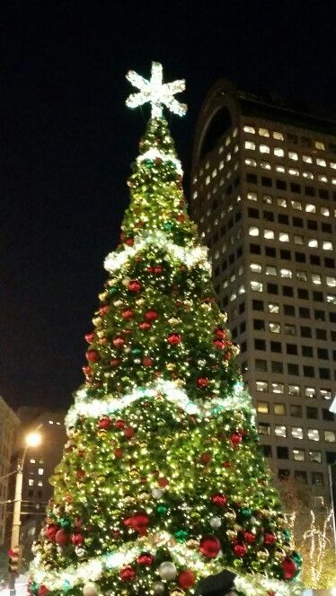 christmas tree in seattle - Christmas Activities In Seattle