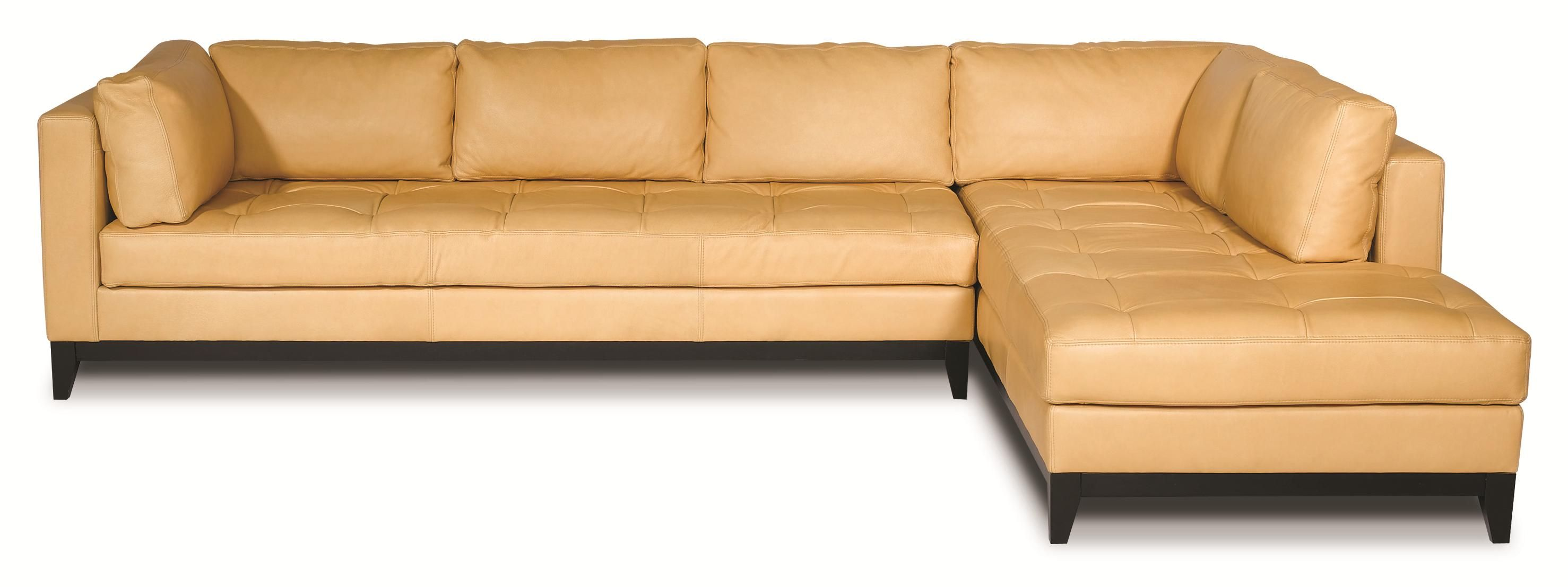 Crystal Cove Sectional Sofa by Elite Leather