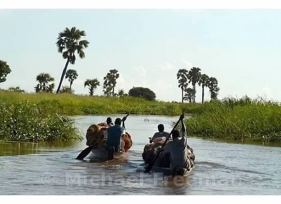Canoes 150 ft long