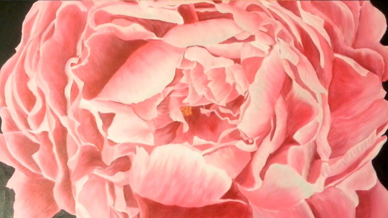 Lovely Painting Of A Peony Flower Speed By Summer Lorde