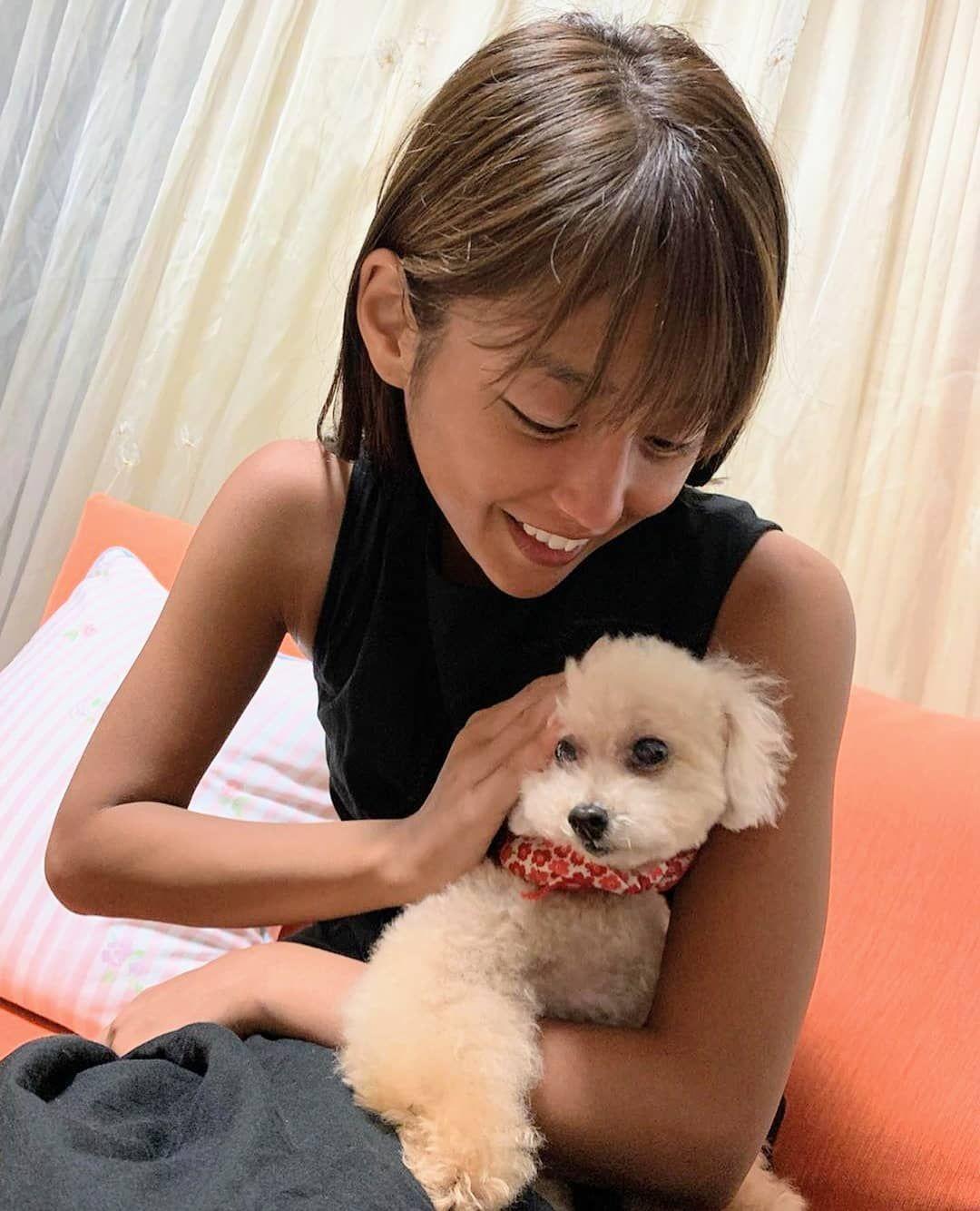 アートに同化するあずきさん Jabbascafe ジャバズカフェ Dogcafe ドッグカフェ 藤岡 狆 茶狆 Chin Japanesechin Chinstagram Dogstagram Dogsofinstgram Dog Dogs Mydog Doggy Pe