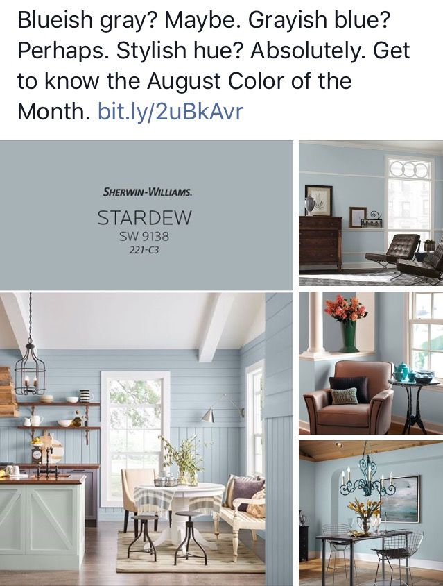Sherwin-Williams color of the month - Stardew   For the Home
