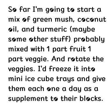 **Rat nutrition ice cube blocks