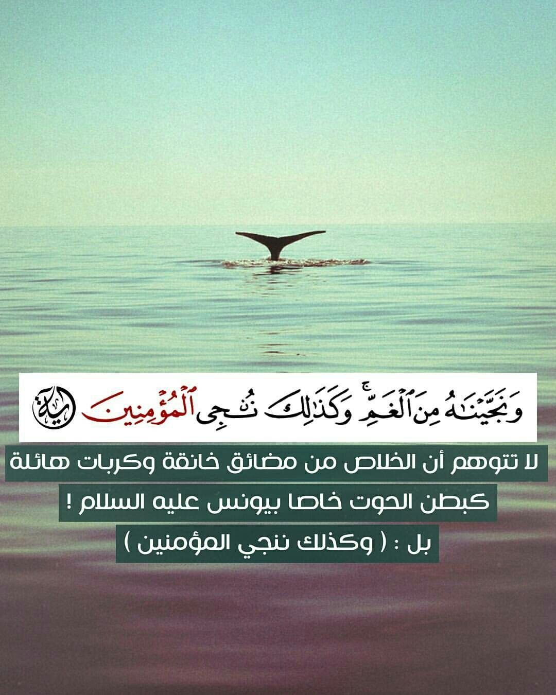 أية قرآنية Quran Verses Quran Quotes Islam Quran