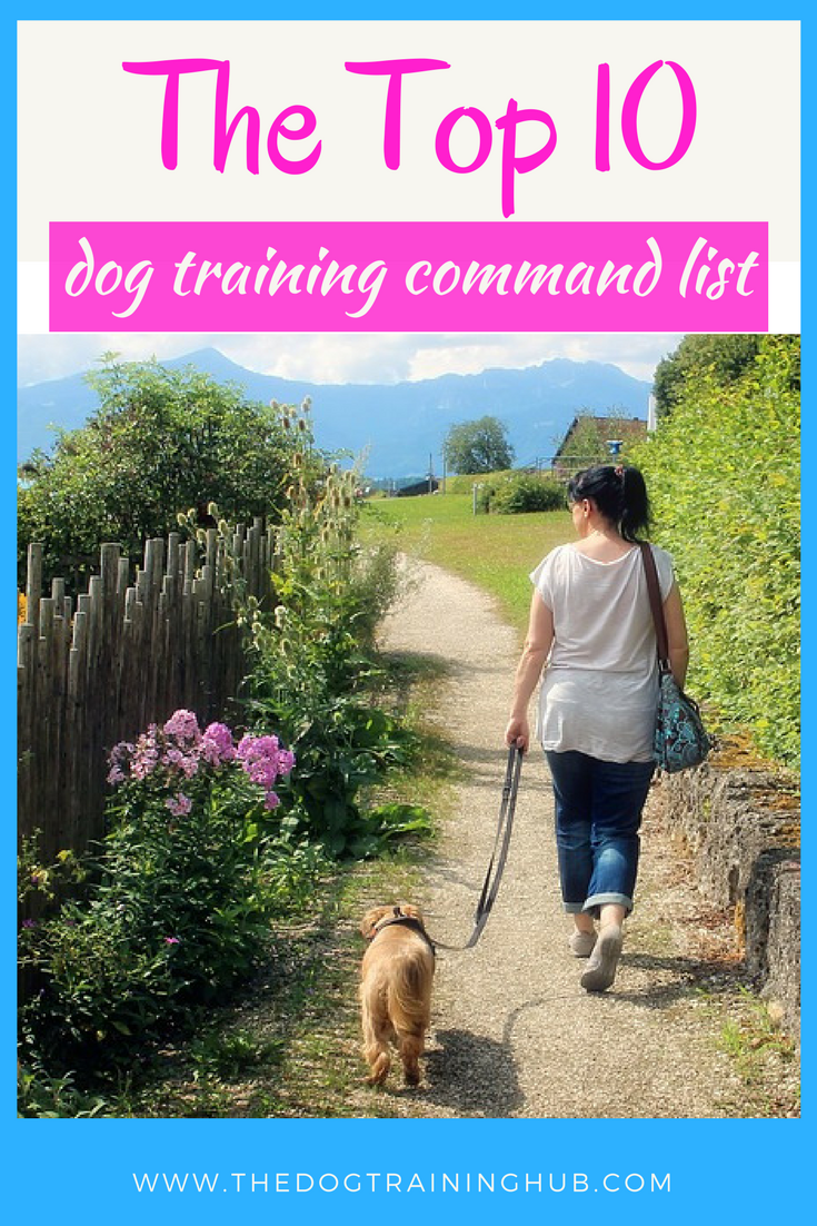 The top 10 dog training command list. Get your free dog