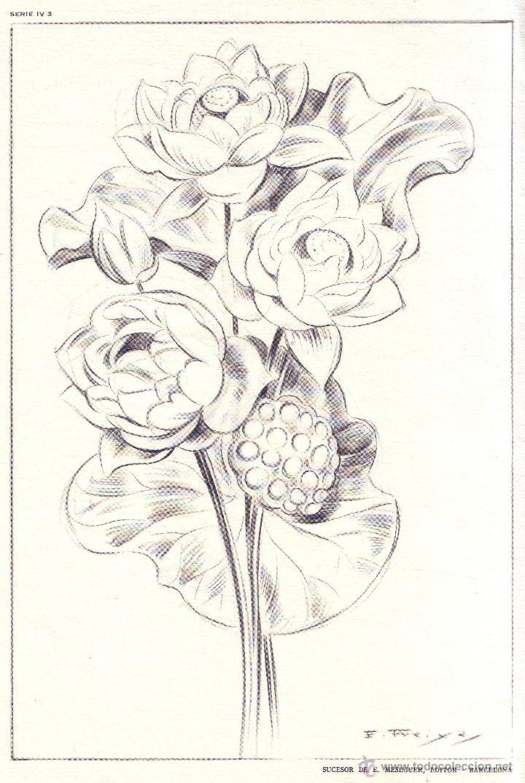 Dibujos de emilio freixas buscar con google a lapiz pinterest emilio dibujos de y - Laminas de dibujo artistico ...