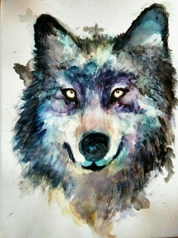 Lobo , acuarela | Lobos | Pinterest
