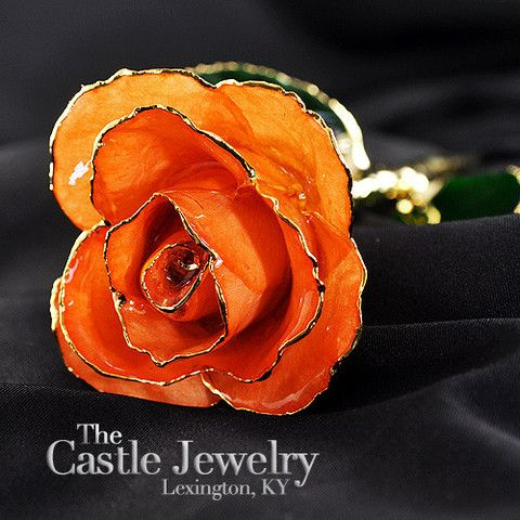 Genuine Peach Rose Preserved Lacquer Dipped 24K Gold Long Stemmed in