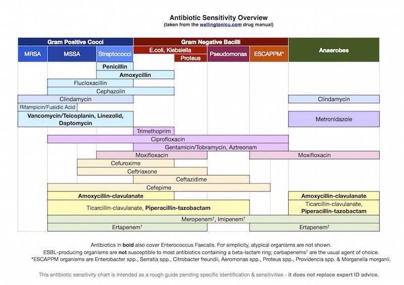 Antibiotic sensitivity chart nurse nurse jo rn pinterest