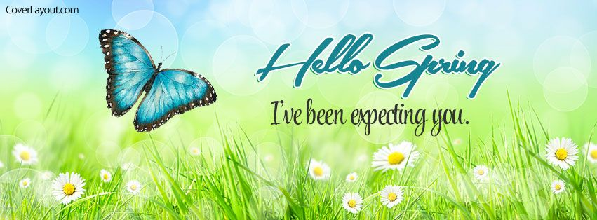 Spring Accommodation Facebook Covers: Hello Spring I've Been Expecting You Facebook Cover