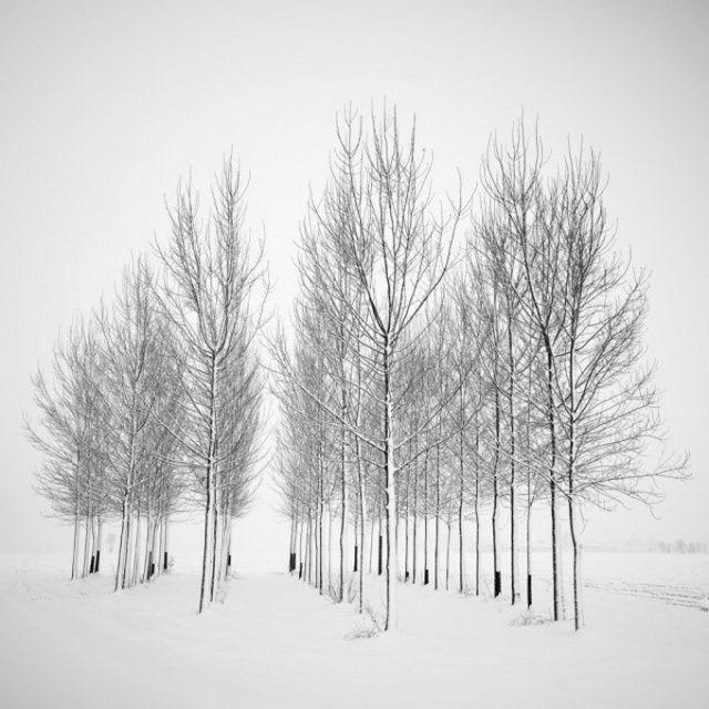 Черно-белые пейзажи Пьера Пеллегрини