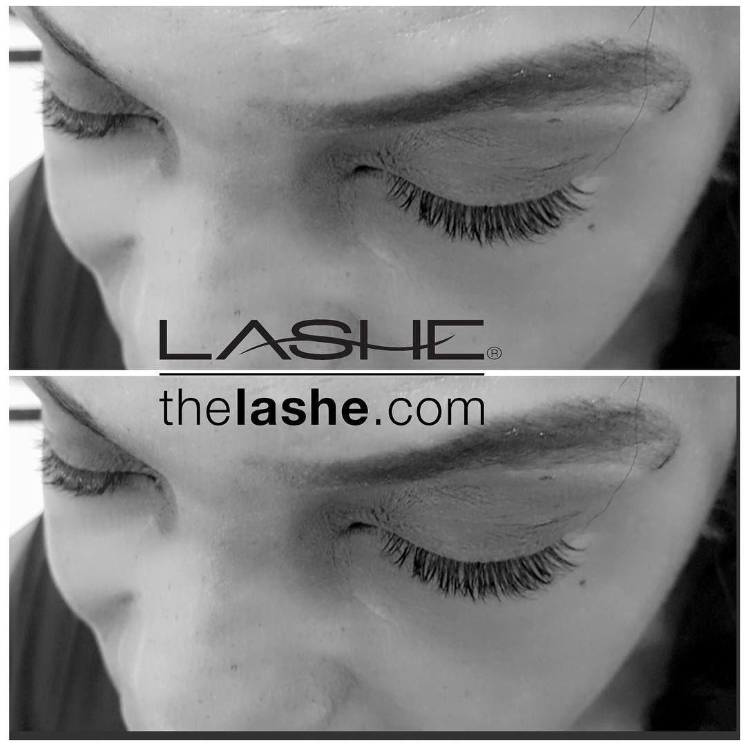 Beautiful Eyelash Extension Petite Set By Salon Lashe Chicago