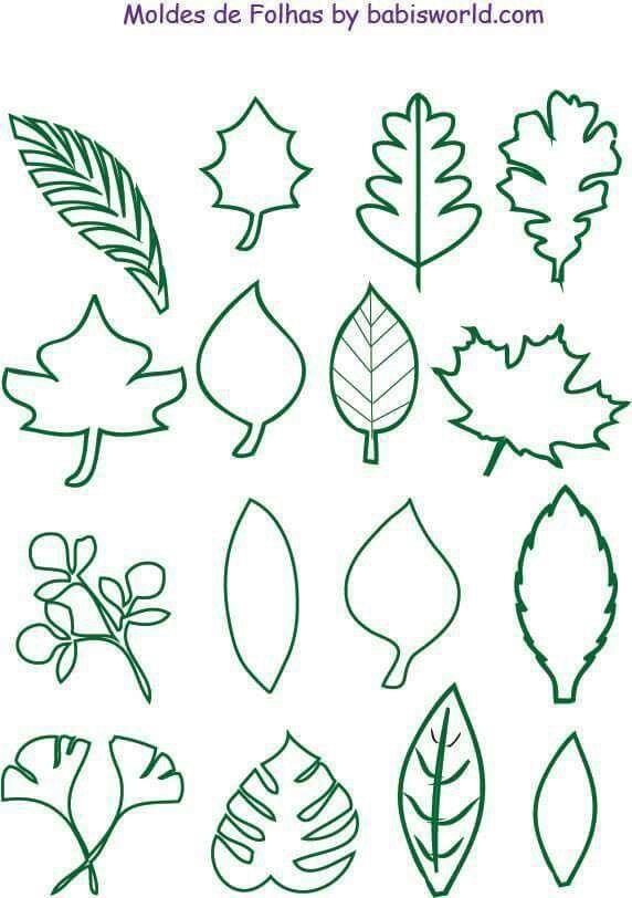 Plantillas De Hojas De árbol Juego Escenarios