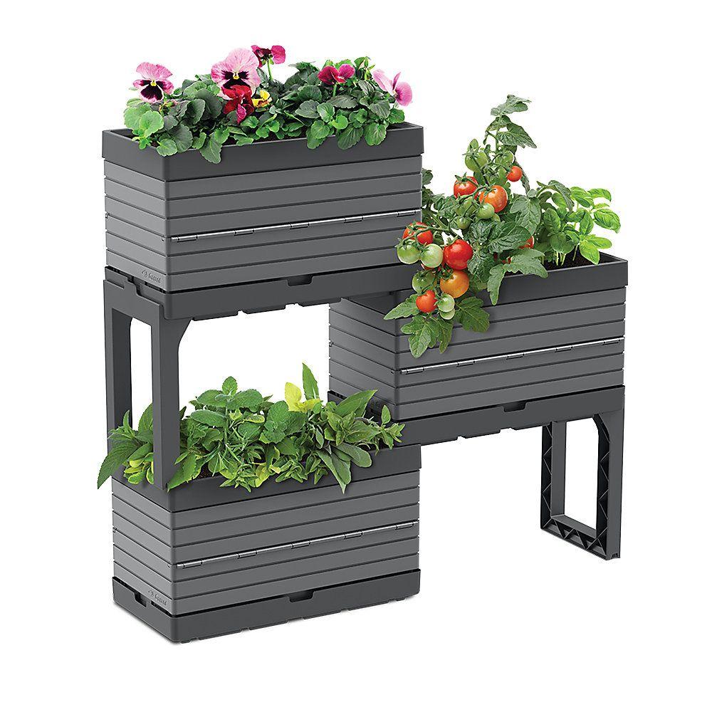 Pin on Balcony Garden