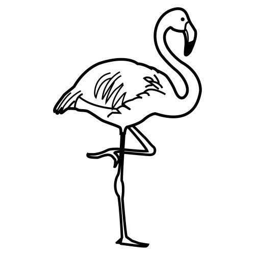 Coloring Cute Flamingo Pages 2020 Flamingo Coloring Page