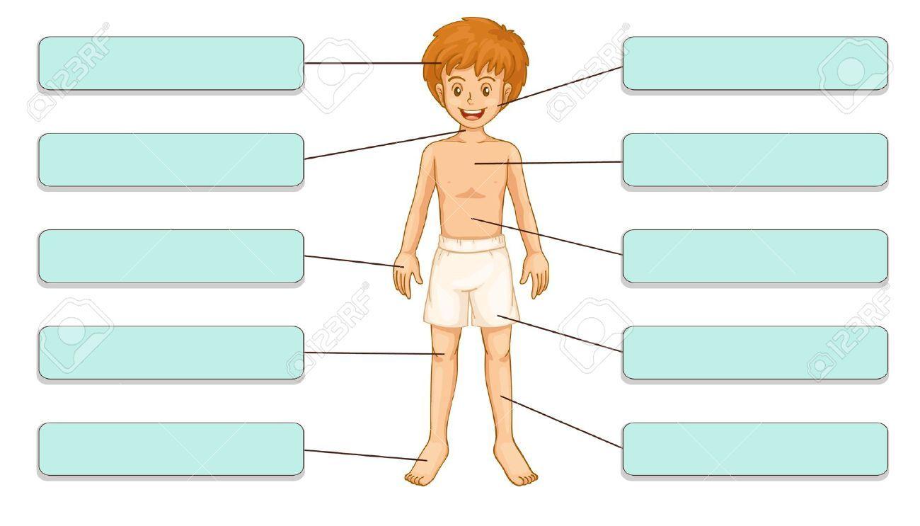 tokeo la picha la human body parts clipart khadijaaaa pinterest rh pinterest com parts of the human body clipart internal parts of the body clipart