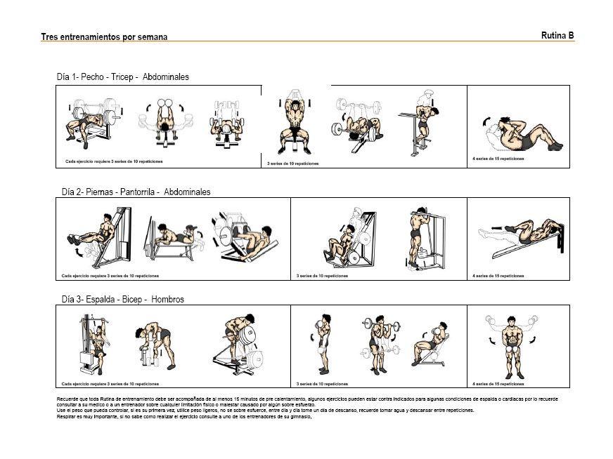 rutina de ejercicios para aumentar masa muscular - Buscar con Google