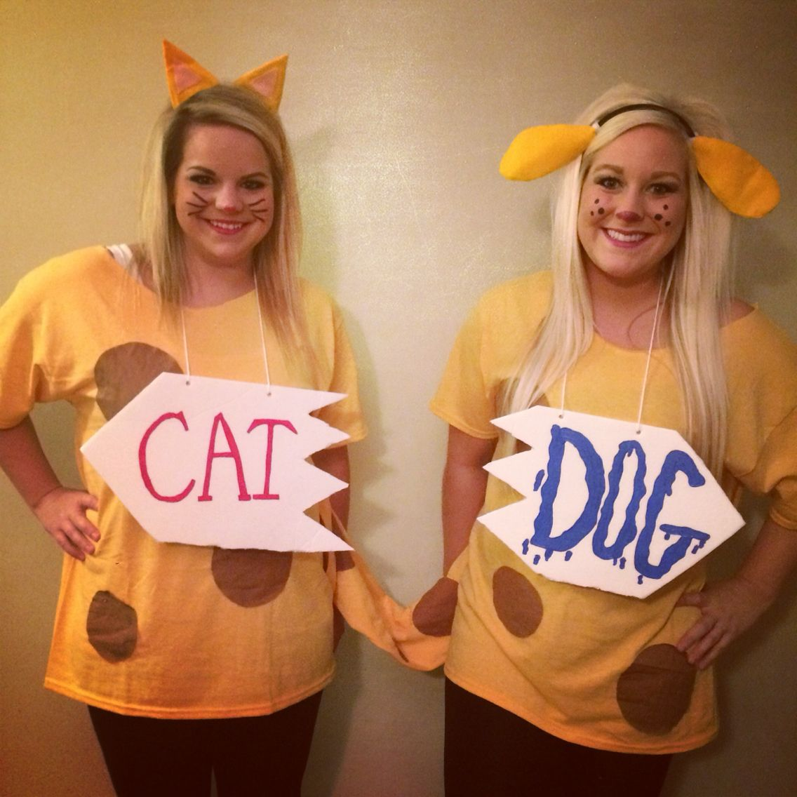 Cat Dog Halloween Costume Halloween Diy Catdog Costume