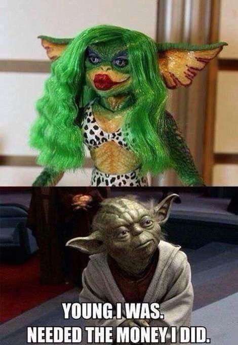 25 Hilarious Star Wars Memes Dark Side Funny Star Wars Memes Star Wars Jokes Star Wars Memes