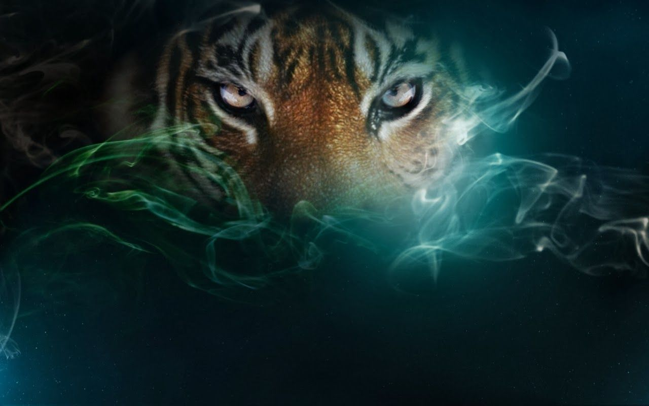 Wallpaper Tiger Eyes Tiger Pictures Tiger Wallpaper Tiger