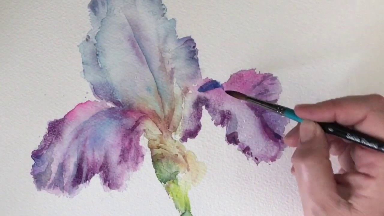 Iris Painting Using Wet In Wet Watercolour Techniques Creating