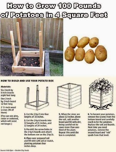 How to Grow Potatoes in Containers : http://goo.gl/2vXUPq  Potato Deck-Patio Grow Planter Bag : http://amzn.to/14amG5H