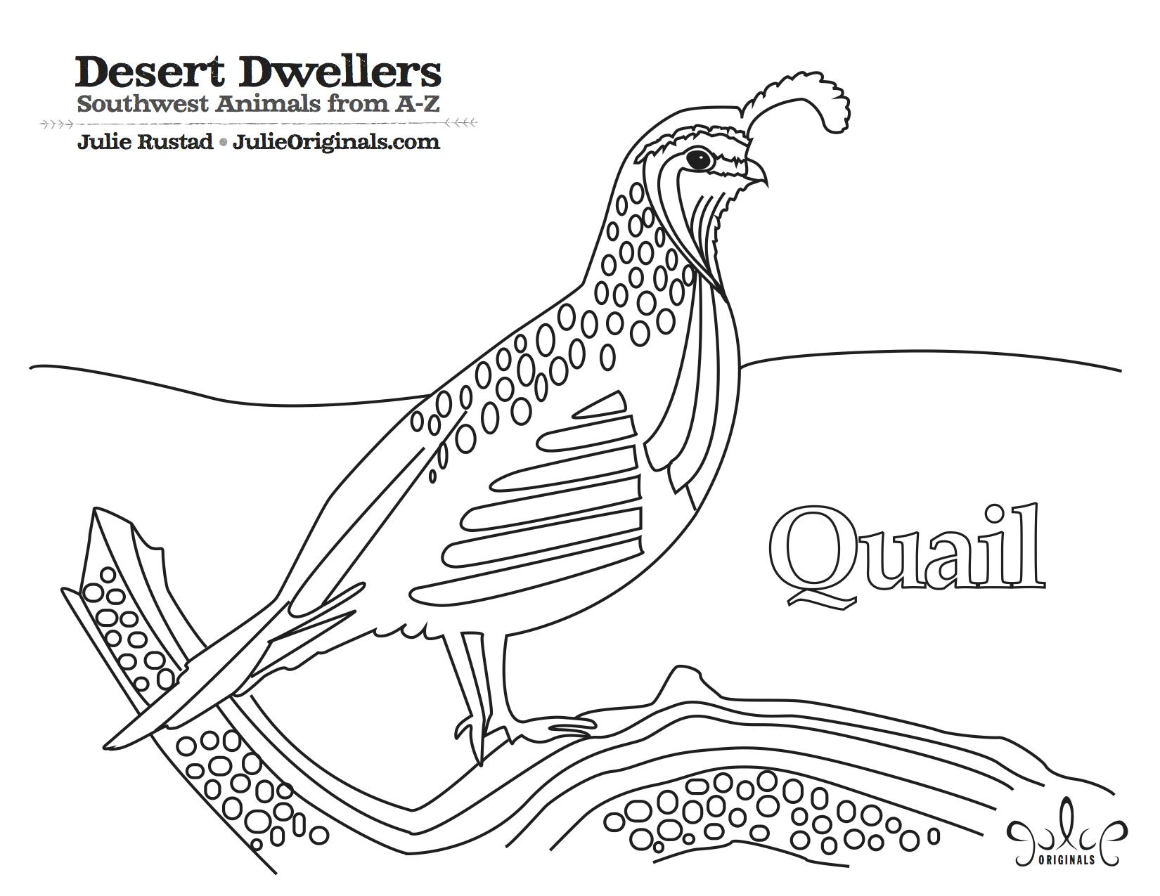 Coloring pages quail - Quail Quailscoloring