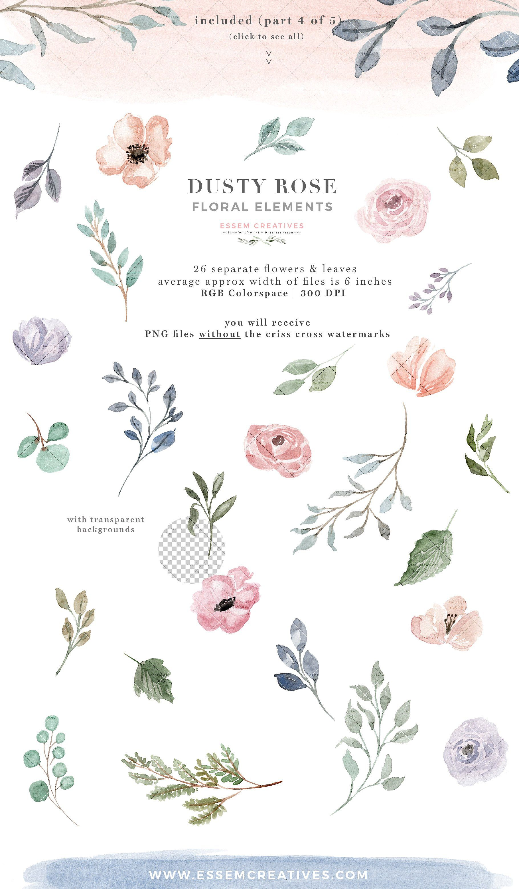 Dusty Rose Watercolor Flowers Clipart, Floral Borders