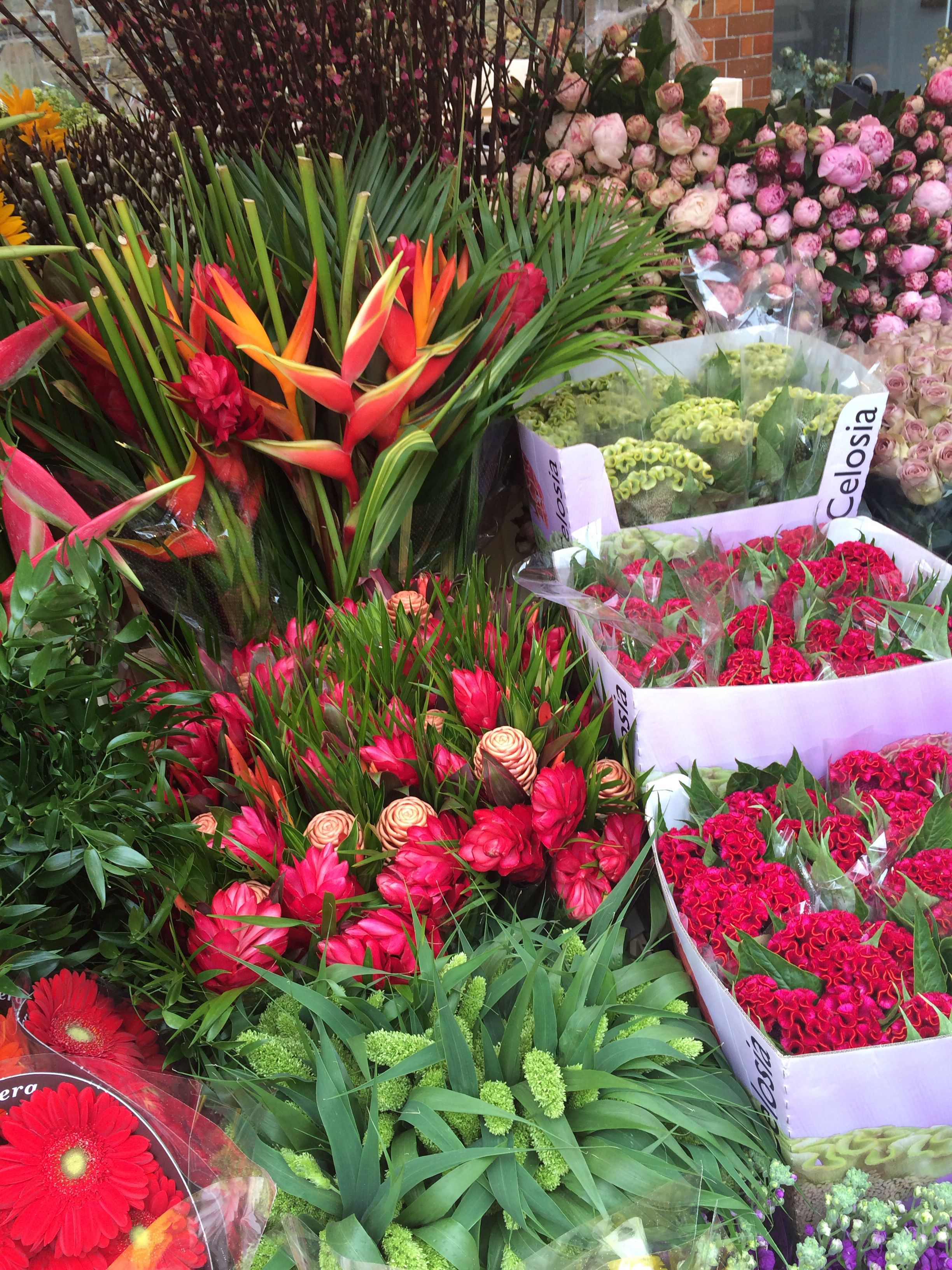 Colombia Road Flower Market Fleuriste