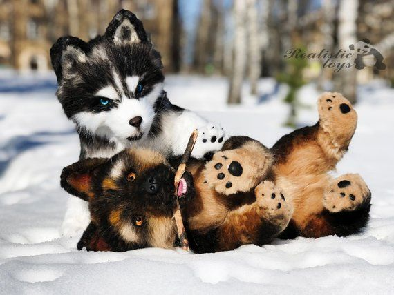 1f223287523e Realistic toy siberian husky puppy, plush stuffed artist collectible teddy  toy, OOAK teddy dog husk