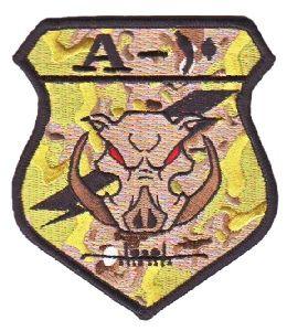 455th AEG / AEW :