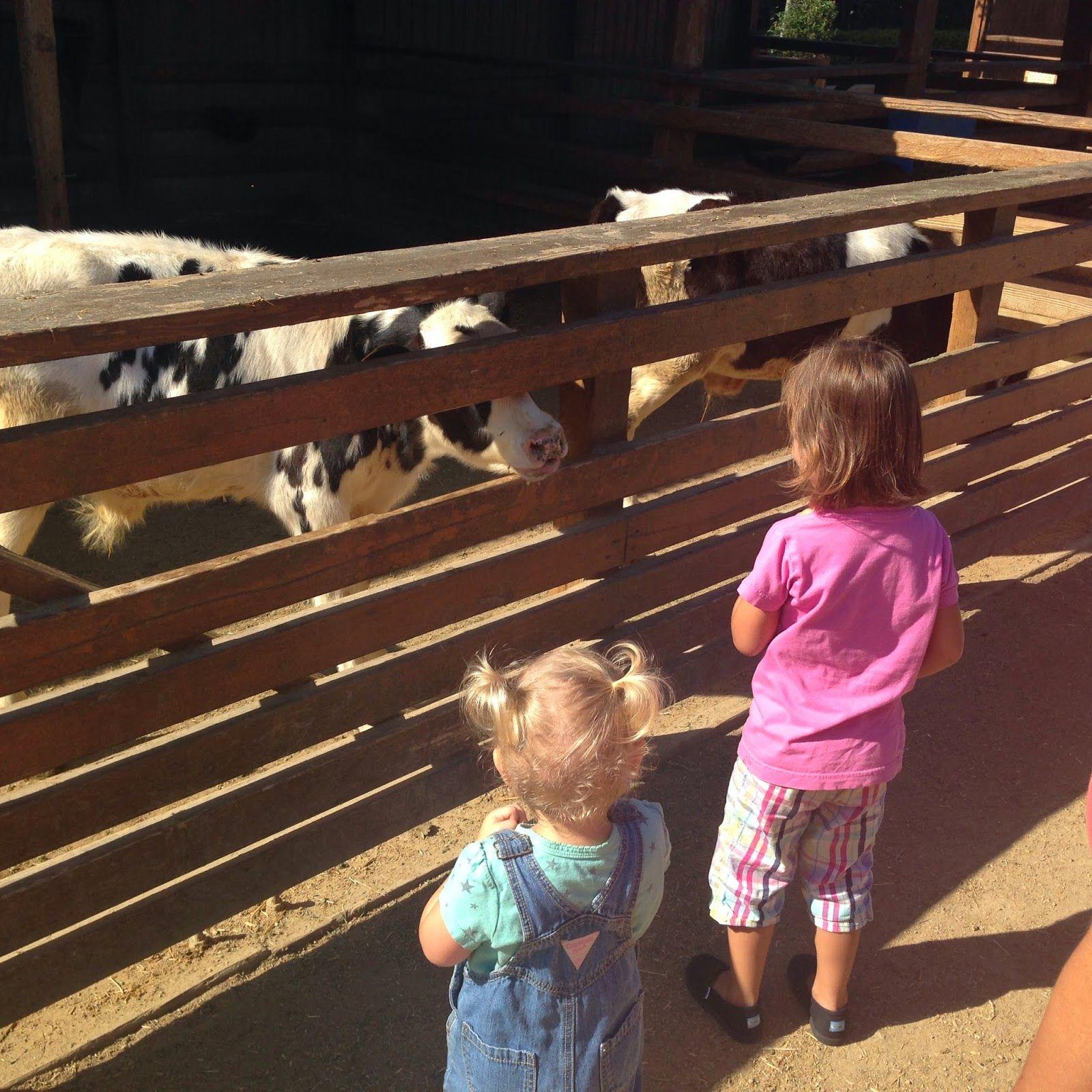Inspired Academy Homeschool Farm Field Trip