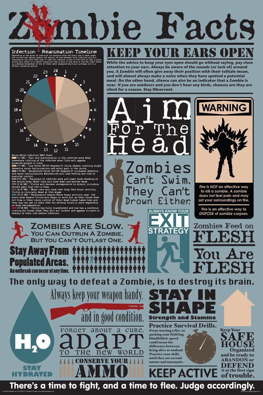 Map Of Usa Zombies%0A Zombie Facts Poster  can be bought at Amazon