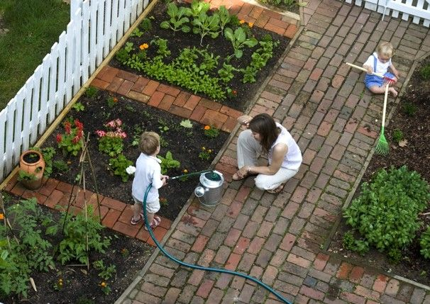 Frugal Mama Blogger A Day In The Life Front Yard Garden Backyard Garden Layout Garden Layout