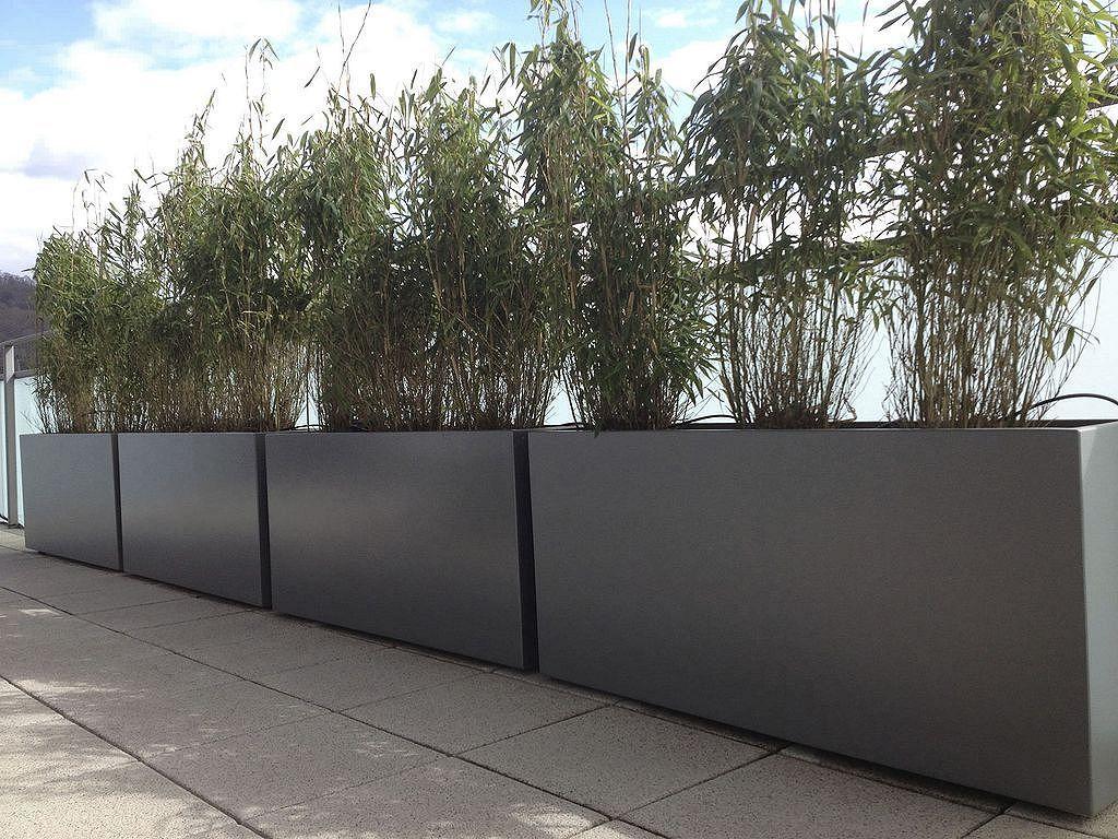 90 Modern Tall Planters Design Ideas Zeitgenossischer Garten