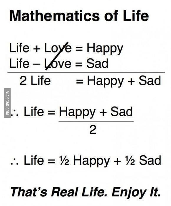 Maths Of Life Math Quotes Funny Quotes Quote Posters