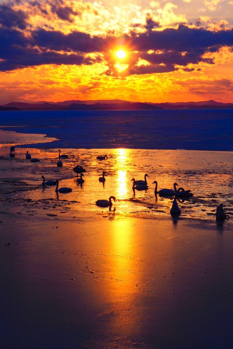 今日も一日お疲れ様でした。今日のサロマ湖の夕景です、白鳥さんもおられ、綺麗なひと時でした。#常呂 #北見市 #サロマ湖 #オホーツク #夕陽 #夕日 #白鳥 pic.twitter.com/5YiqVpqmcf