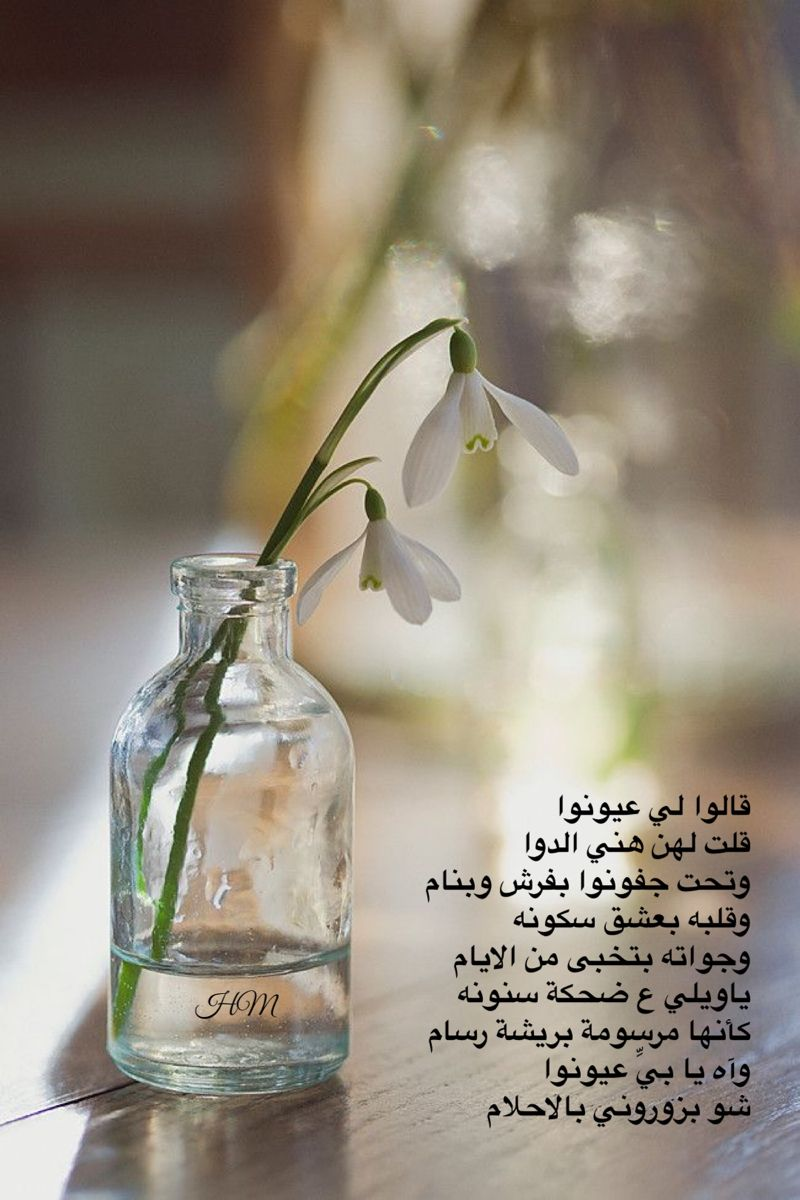 Pin By H On خواطر Words Just Words In 2021 Glass Vase Glass Vase
