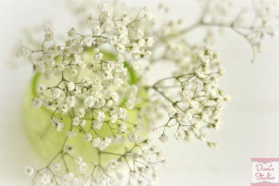 Frühling Fine Art Foto Grün Floral