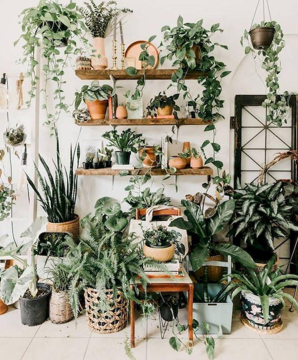 Fantastic Intelligent And Low Cost Indoor Garden Ideas Hanging Plants Indoor House Plants Decor Bedroom Plants