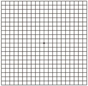 This Is An Amsler Grid It Is Used To Check For Changes In Vision