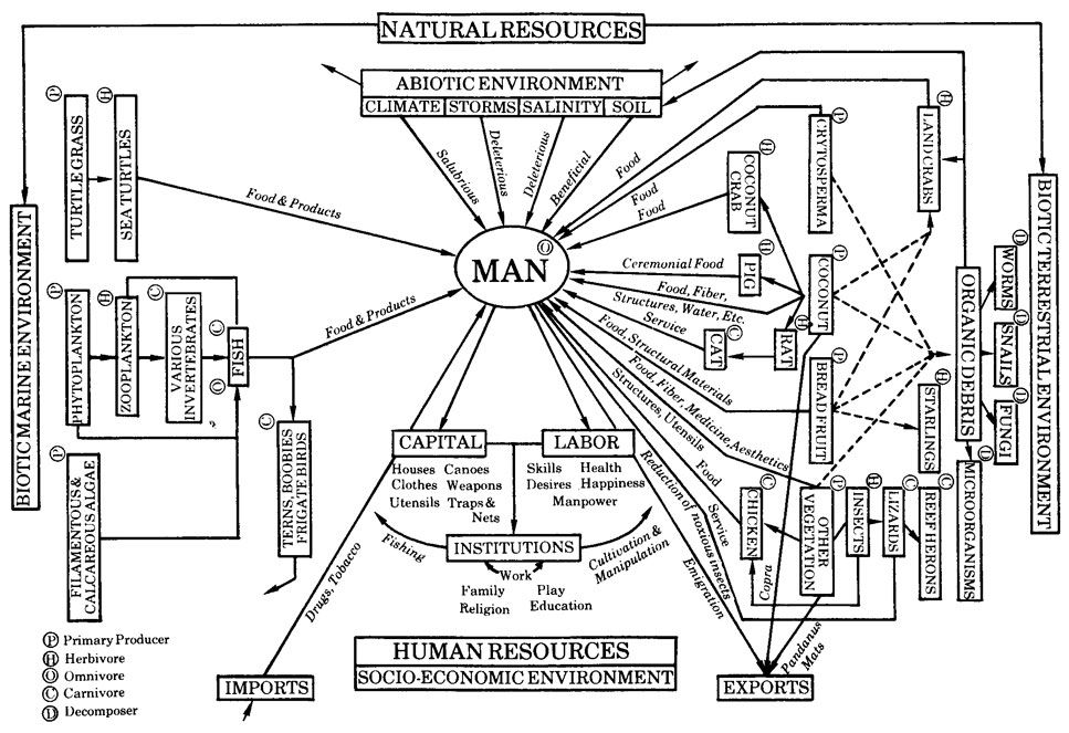 Stanley A. Cain, Man and His Environment, in Michael