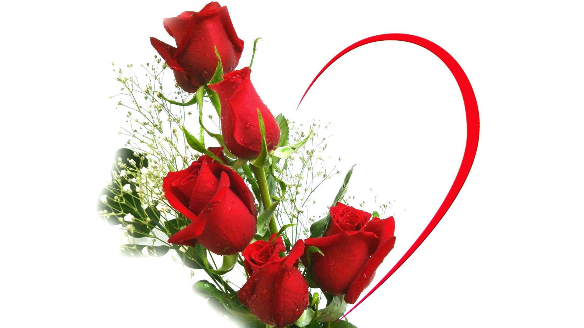 Картинки бестолочь, цветы для тебя картинки красивые на фоне
